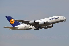 """""""Wien"""" Lufthansa D-AIMG Airbus A380-841 cn/69 @ EDDF / FRA 18-09-2016 (Nabil Molinari Photography) Tags: wien lufthansa daimg airbus a380841 cn69 eddf fra 18092016"""