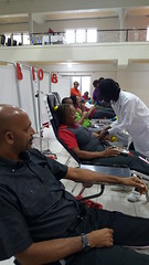 NBTS Collects 28,271 Units of Blood