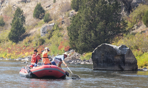 wilderness beartrap montana blmmontana fishing rafting hiking scenic photography nature water river outdoors