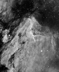 Pelican Nebula (IC50701) in Hα (Carballada) Tags: astrophotography astronomy deep space astro celestron zwo as1600mmc skywatcher ts sky qhy qhy5iii174 narrowband