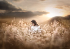 Butterfly ({jessica drossin}) Tags: jessicadrossin butterfly sunset clouds sky mountains flowers wildflowers bokeh fine art wwwjessicadrossincom