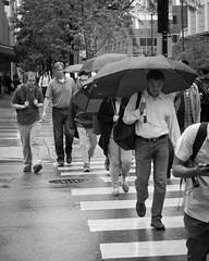 Friday Morning Hustle 5.jpg (GDMetzler) Tags: umbrella commuter friday tgif d90 chicago rain outside blackandwhite bw