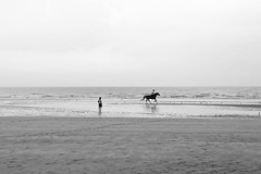 Solitudes océanes (Catherine Reznitchenko) Tags: france normandie normandy black white blackwhitephotos paysage landscape femme woman homme man people street plage beach cheval horse cavalier rider ocean solitude lumière light travel extérieur outdoors sable sand silhouette silhouettephotography mer water waterscape waterfront watcher sea seascape seaside ciel sky cloudy nuages atmosphere atmosphère vagues waves mood
