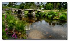 PostBridge (jeremy willcocks) Tags: postbridge dartmoor devon colour uk landscape clapperbridge bridge river water sun sunny foxglove trees jeremywillcocks wwwsouthwestscenesmeuk fujixpro2 xf1024mm