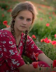 Katie chose red for the poppy field (prueheron) Tags: purple red poppies portrait dress sunset backlit poppyfield