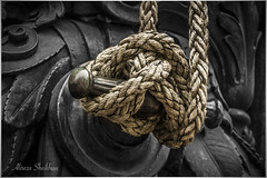 Rope (Persian.Gulf) Tags: rope knot tie monochromatic black white eos 700d canon