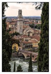 Verona (JLCB PHOTO) Tags: italia veneto verona ciudad medieval rio puente piedra arboles cielo iglesia torre