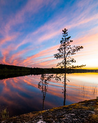 By the lake (Nippe16) Tags: landscape lake sunset colorful tree art color colors summer finland suomi vibe vibes