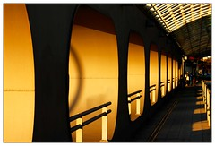 Golden sun (frodul) Tags: architektur brücke detailaufnahme gestaltung konstruktion kurve linie hannover abendsonne haltestelle licht noltemeyerbrücke schatten geländer hanover goldensun niedersachsen deutschland