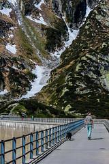 Grimsell-Pass_DSC5026 (Mel Gray) Tags: grimselpass switzerland mountainpass travel dogwalker bridge mountains snow highaltitude