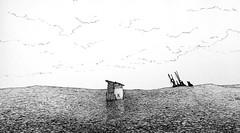 After the Rain (Marcos Telias) Tags: illustration drawing dibujo ilustración sketch boceto bosquejo arte artista artist ballpoint bolígrafo pen lápiz fantasy