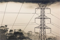 The Power and the Beauty (Trains In Tasmania) Tags: australia tasmania mountlloyd transmissiontower electric powerlines fog mist wires lines trees clouds cloudy grid trainsintasmania stevebromley canoneos550d ef35350mm13556lusm he theb tttt