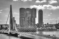 Rotterdam HDR (vdkchristel) Tags: rotterdam reis uitstap erasmusbrug
