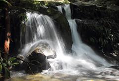 Fotografia de Antioquia (alexandragallotabares) Tags: sancarlos cascadas agua antioquia