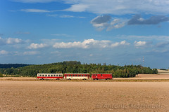 Verso Osoblaha... (Antonio Martinetti) Tags: treno train tremesna osoblaha old vasut vonat vlak zug czechia narrow narrowgauge