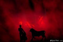espagne matador rouge sang corrida taureau drame... (Photo: Rached MILADI -رشاد الميلادي on Flickr)