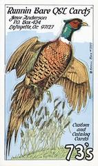 Runnin Bare #0507: Runnin Bare QSL Cards - Lafayette, Oregon (2) (73sand88s by Cardboard America) Tags: runninbare qsl qslcard cbradio vintage pheasant oregon artistcard