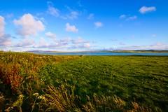 Loch of Harray (rustyruth1959) Tags: nikon nikond3200 sigma1020mm scotland orkney twatt lochharray water landscape sky clouds moon wall loch fields wildflowers grass field evening