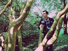 My darkest light will shine (Inés Luque Aravena) Tags: ragazzo uomo hombre muchacho nature natura naturaleza foresta forest bosque giardino garden jardín tree albero árbol branch rama ramo valdivia chile sur austral botánico botanic