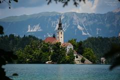 Slovenia | Bled Island (Nicholas Olesen Photography) Tags: slovenia bled island lake horizontal europe outdoors church building water mountains trees framed frame travel nikon d7100