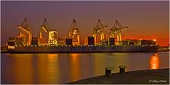 COSCO - 14041001 (Klaus Kehrls) Tags: hamburg hamburgerhafen sonnenuntergang schiffe gewässer flüsse elbe industrie