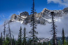 The Clouds' Embrace (Harry2010) Tags: mountain mist fog cloud snow banff banffnationalpark icefieldsparkway