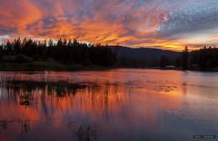 Sun Sets Over Harmon Lake (Clayton Perry Photoworks) Tags: harmonlake thompsonnicolaregionaldistrict bc canada explorebc explorecanada reflections sunset camping