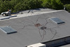 Spider (scienceduck) Tags: 2017 june seattle washington usa us america pacific northwest scienceduck spider art painting roof