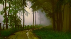 Foggy Lane (Brett Streutker) Tags: water welcome aboard jet liner fligh ngiht night flying redeye sidewalk street streets urban city fog fear add tags beta remorse sad lonely thinking memory dreams nostalgia painting picture steam train lifeform alien et space sky road ufo fiction together evening ambient storms rainy all 3rd nightshift union romance love desire fantasy journey shape shifters ghosts spirits haunted abandoned nasa seti car sagan comsos pbs eternity creation god creator hubble probe