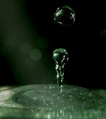 L'acqua (julianaseiffer) Tags: gotas agua waterdrop brilho macrofotografia
