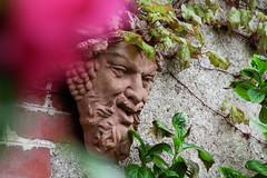S.MasséMaisonduMajordome©TourismeHautLimousin-6 (tourisme_hautlimousin) Tags: jardin gîte vacances hautlimousin patrimoine location fleurs botanique tourolim