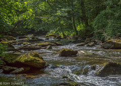 East Lyn river (cricketlover18) Tags: eastlynriver lynmouth watersmeet