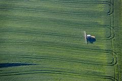 Tractor In The Tracks (Aerial Photography) Tags: by la ndb 17062013 5d343526 ackerbau buchaerlbach feld fotoklausleidorfwwwleidorfde getreidefeld grün landschaft landwirtschaft linien luftaufnahme luftbild niedererlbach sprühen spuren traktor weizen aerial agriculture cornfield field green landscape lines outdoor traces tracks tractor verde wheat buchaerlbachlkrlandshut bayernbavaria deutschlandgermany deu