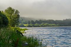 Hazy Summer Morning (burgootim) Tags: ireland blessington lakes summer sonya58 sunlight haze colours