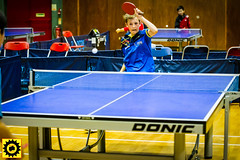 BATTS1706JSSb -505-2-142 (Sprocket Photography) Tags: batts normanboothcentre oldharlow harlow essex tabletennis sports juniors etta youthsports pingpong tournament bat ball jackpetcheyfoundation