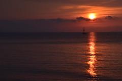 The Golden Path Ahead (saromon1989) Tags: sunrise golden sun sea landscape panorama orange nature