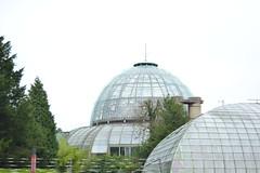 Bruselas (Bélgica) (littlecastle96) Tags: geografíahumana bélgica bruselas edificio monumento turismo cúpula cristal dome architecture arquitectura building invernadero greenhouse belgium