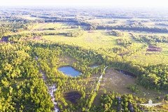 Rural- fishing ponds_DJI_0034 (RJJPhotography) Tags: djiphantom4pro dji hinesville georgia southerngeorgia fishing ponds aerials landscapes