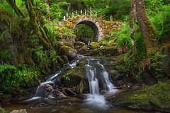 The Fey Realm - Scotland (Gavin Hardcastle - Fototripper) Tags: scotland photography workshop gavinhardcastle fototripper waterfall bridge fairy green scottish faerie river creek