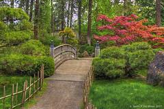 "The Bridge At The (jimgspokane) Tags: japanesegarden spokanewashingtonstate ""nikonflickraward"" naturewatcher"