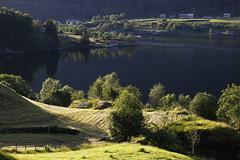 Dalsfjorden (dese) Tags: dalsfjorden fjord sunnfjord june30 2017 june302017 2017 june juni sommar summer fjaler sognogfjordane fjordane vestlandet norway scandinavia