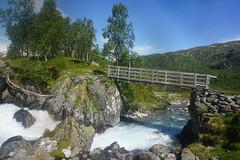 DSC02933 Grytørstølen (JarleB) Tags: røldal røldalstrimmen blåbergdalen haukelifjell haukeli tur norway norwegen norge nature natur fjell mountain hordaland grytørstølen hansastølen