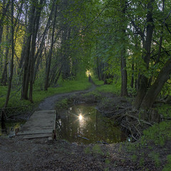 dark avenues (Sergey S Ponomarev) Tags: sergeyponomarev canon eos ef24105f40l nature forest woods path walk stroll summer morning sunrise hdr highdynamicrange panorama square 1x1 water reflections reflessi bridge man human june giugno estate kirov russia park garden 2017 europe сергейпономарев природа утро пейзаж лето июнь киров север россия панорама рассвет аллеи прогулка landscape paysage paesaggio