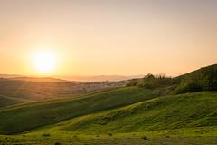 DSC_0676.jpg (saladino85) Tags: tuscana tuscany scenery sunset trees italy green hills typical holiday landscape