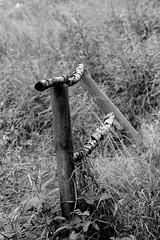Railing (Von Noorden her) Tags: rails rail railing geländer blackandwhite bw dark black white shade shades nature wood holz