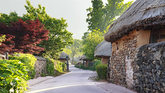 Trail in the Nagan Folk Village (Johnnie Shene Photography(Thanks, 2Million+ Views)) Tags: trail road street avenue walkpath path nagan folkvillage thatch thatched house sun sunbeam sunlight sunray oldstyle oldfashioned travel destination attraction landmark local regional region jeollanamdo jeonnam suncheon day daylight morning photography horizontal outdoor colourimage fragility freshness nopeople foregroundfocus adjustment lowangle traditional tradition trees plant korea asia tranquility tranquil scene scenic scenery wall antique ancient old artificial manmade bright canon eos600d reblet3i kissx5 sigma 1770mm f284 dc macro lens 낙안읍성 낙안 마을 풍경 선광 전남 순천