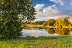 Golden Hour @ Pitfour Lake (ChicqueeCat) Tags: nature sunset lake water pitfourlake sunrise landscape goldenhour