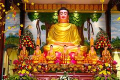 A DI DA PHAT QUAN THE AM BO TAT DAI THE CHI BO TAT GUANYIN KWANYIN BUDDHA 9168 (ketnoivietnam) Tags: amazing affectionate amitabha architecture art asia avalokitesvara awesome bangkok beautifull beijing palace bhutan bodhisattva bouddha buddha tooth relic temple buddhism buddhist china chinatown chua excellent fantastic flickraward gold golden guanyin hainan hdr history hong kong indian information japan korea kuanim kuanyin kwanyin laos laughing 佛 观音 観音 寺