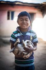 Boy Holding Bunny (mayanfamilies) Tags: mayanfamilies fundaciónfamiliamaya guatemala ngo panajachel annawatts charity sponser family donate boy bunny rabbit pet smile happy hug