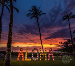 Aloha from Maui (brandon.vincent) Tags: aloha maui sunset hawaii palm tree tropical wailea
